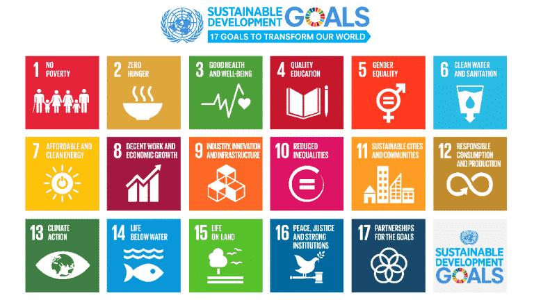 UN Sustainable Development Goals – 17 goals to transform our world
